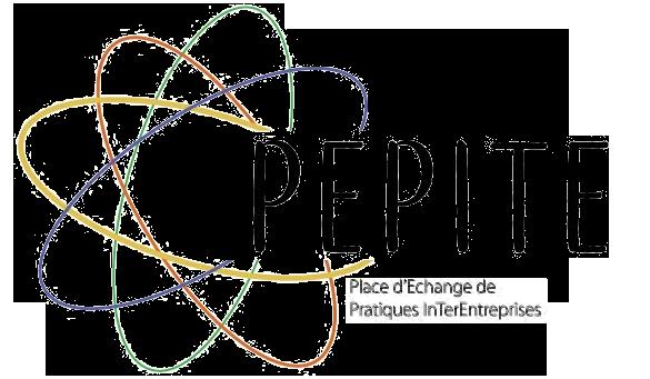 Pépite, une innovation pionnière – Stratego Conseil
